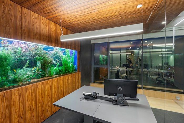 אקווריום גדול במשרד