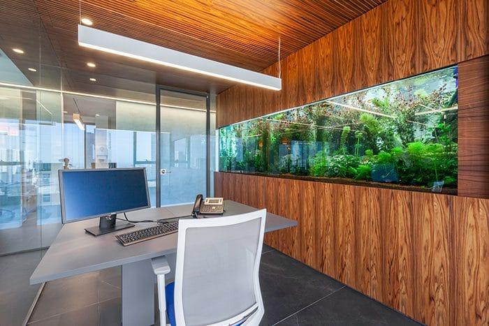 אקווריום במשרד ותקרה מעץ