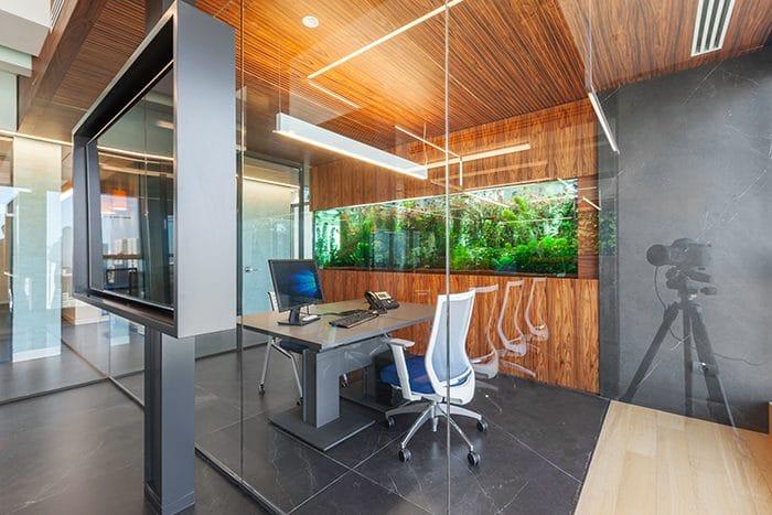 עיצוב משרד בשילוב אלמנט של אקווריום וחיפוי עץ על הקיר והתקרה